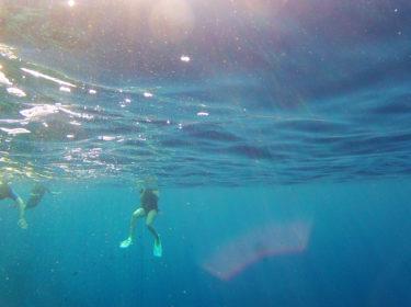 Deep Blue Snorkeling